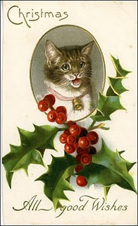 Victorian cat with holly and holly berries